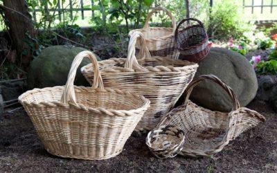 Corso di cesteria – Dalle piante ai cesti
