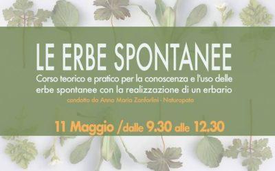 """Corso teorico e pratico """"Le erbe spontanee"""""""